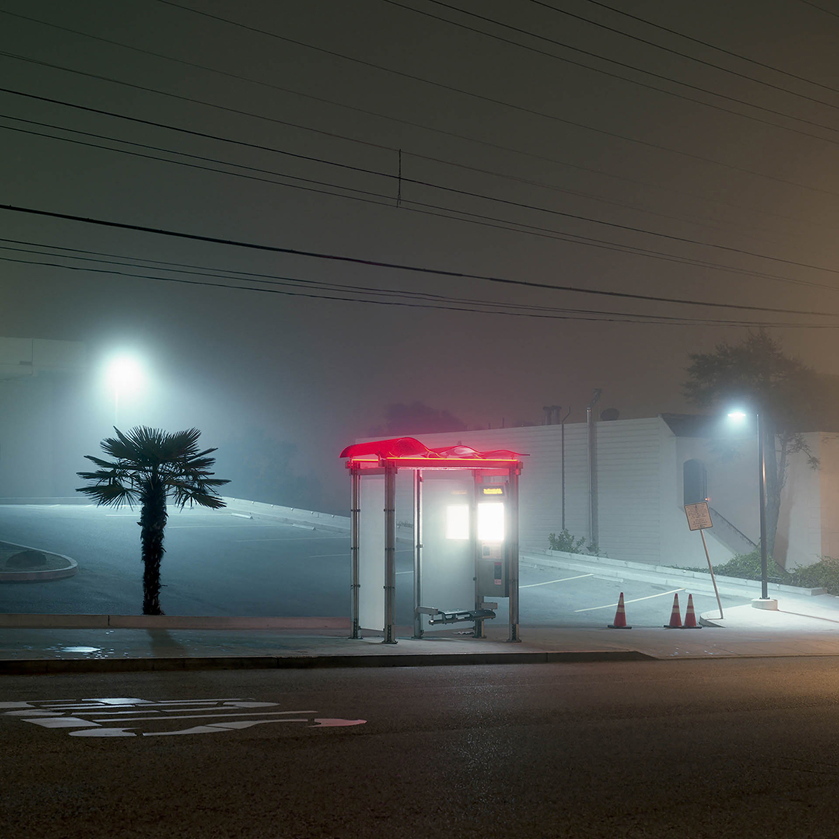 The Foggy Night