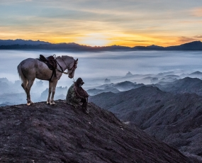 Man and Horse at Sunrise